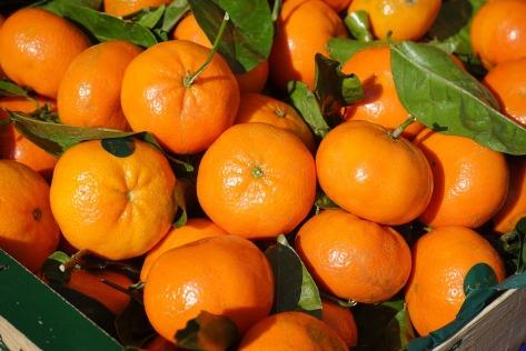 clementines-318210_960_720.jpg