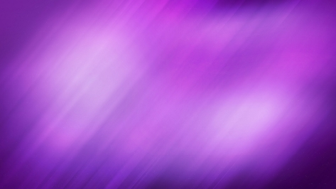 violet-vs-lavender-wallpaper-1