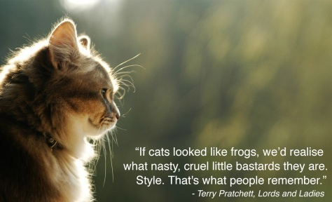 terry-pratchett-quote-cat